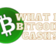 What is Bitcoin Cash (BCH) Cryptocurrency?